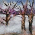 Winter wood 6x6