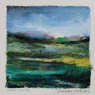 Landscape Study 673